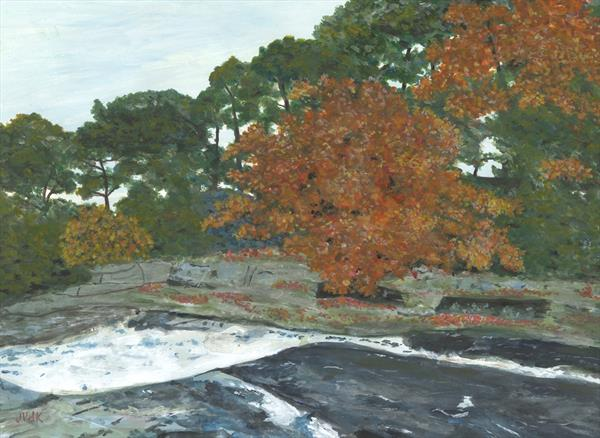 Aysgarth Falls, Autumn by John Van Der Kiste