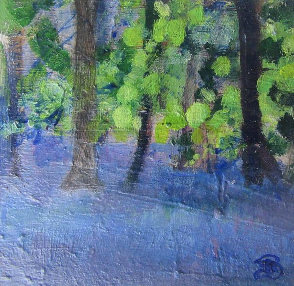 Bluebells by Sally Bassett