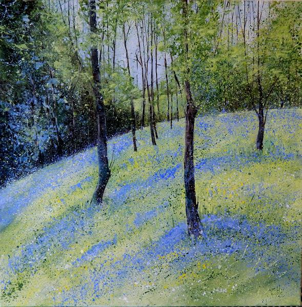 Bluebell Wood by Denise Coble