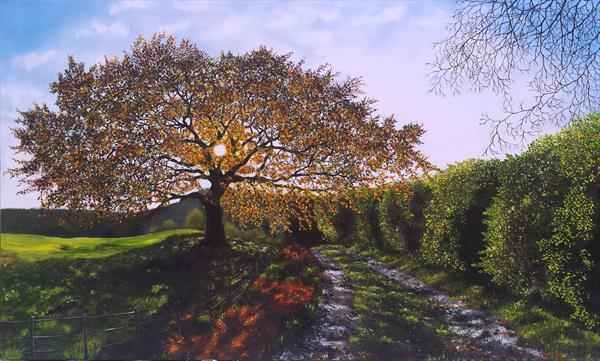 Oak Tree by Hazel Thomson