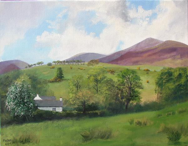 Applethwaite, Underskiddaw, 6/6/13 by Peter Brook