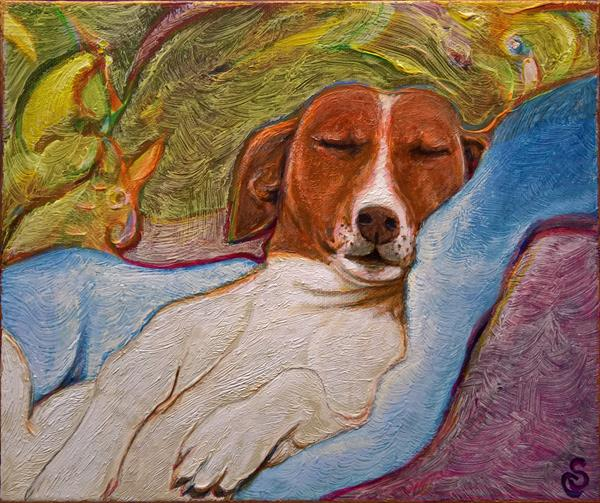 THE VAN DOG DREAMS  by Carlo Salomoni