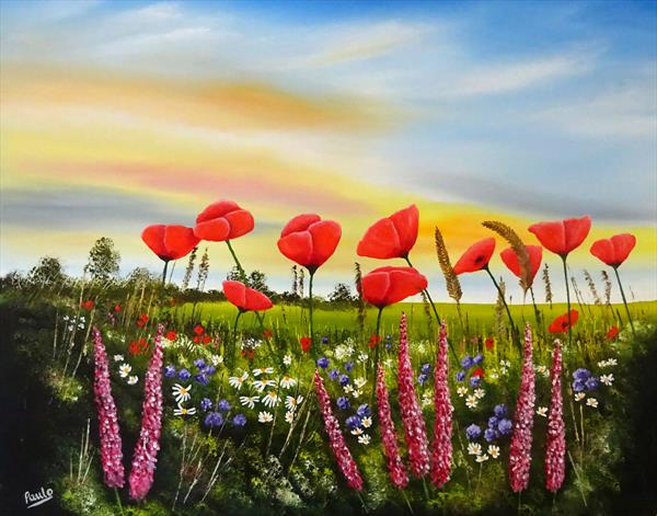 Evening Poppies by Paul Oughton