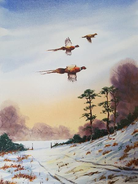 pheasants in the snow by Ricky Figg