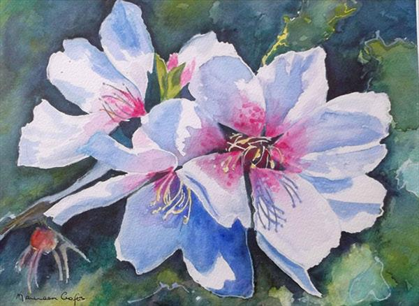 Rose of Sharon by Maureen Crofts