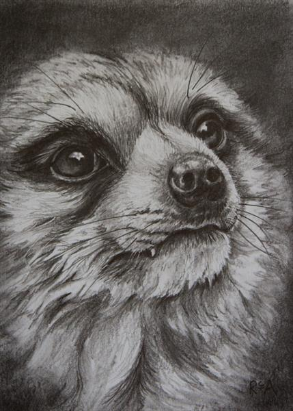 Meerkat by Ruth Archer