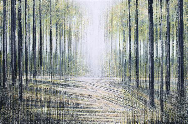 White Light Through Trees by Marc Todd