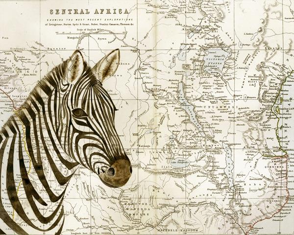 Zebra and Map of Africa Limited Edition Print by jane Wilson