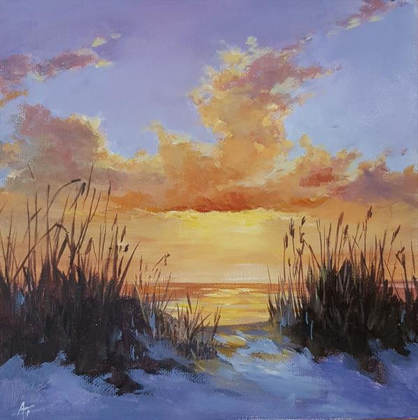 The dunes at sunset by Andrea Thomas