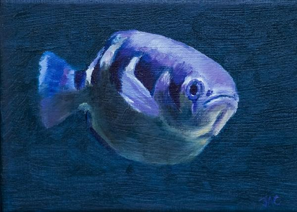 Striped Fish by John Crabb
