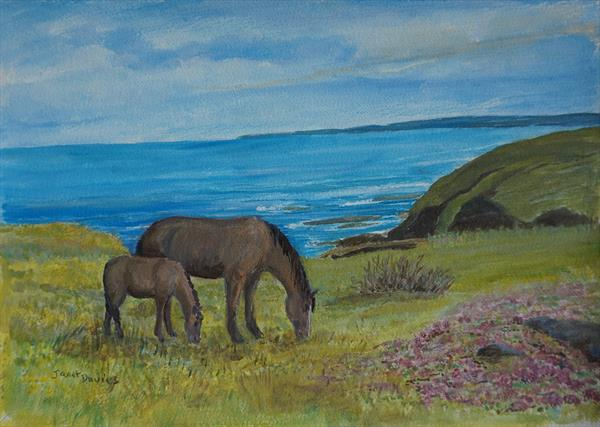 Ponies On The Cliffs by Janet Davies