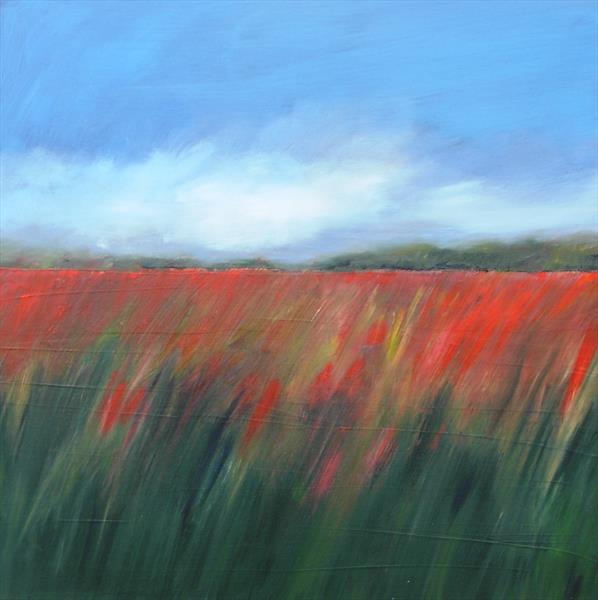 Field of Poppies 5