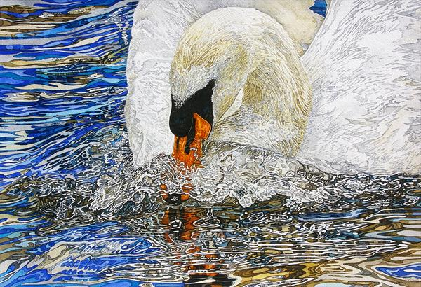 Swan in a temper by Rhian Symes