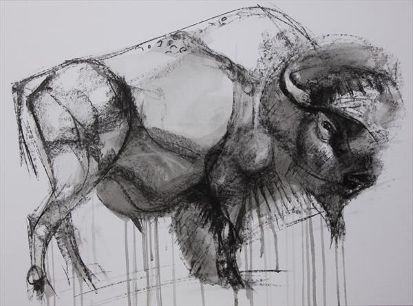 Buffalo.2 by Liane Stevenson
