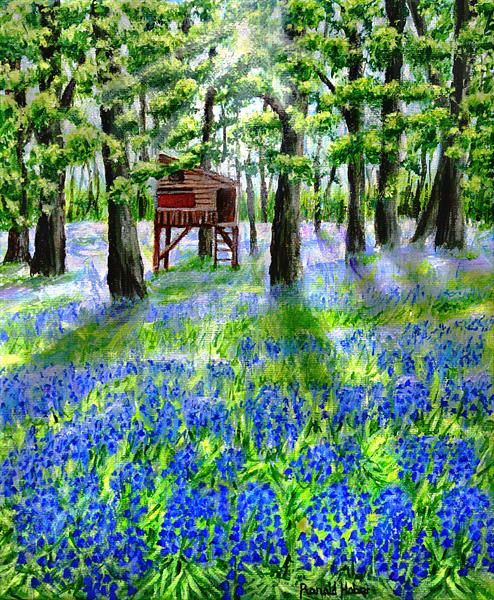 Bluebells at Warton Hall - St Annes on Sea by Ronald Haber