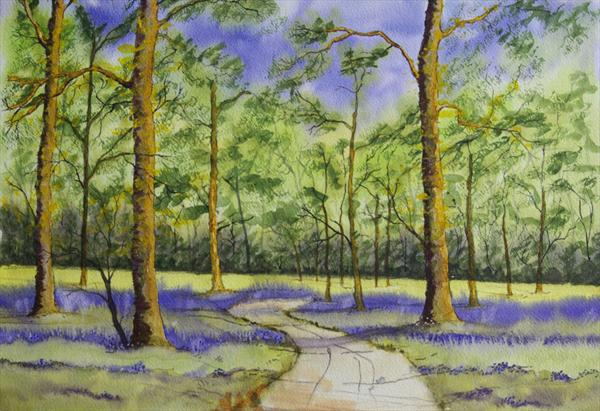 Bluebell wood by Trevor Meek