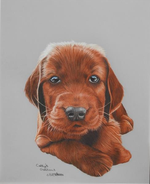 Irish Setter Puppy by Cathy Settle