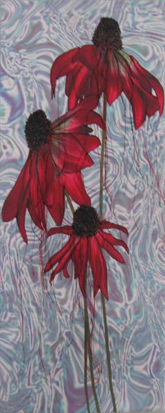 Echinacea Series 2 Distorted by Linda Calverley