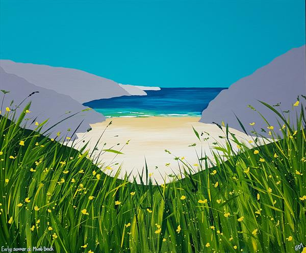 Early summer at Mwnt Beach, Wales by Sam Martin