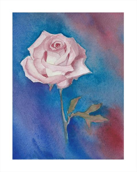 The Valentine Rose by Maggie Frampton