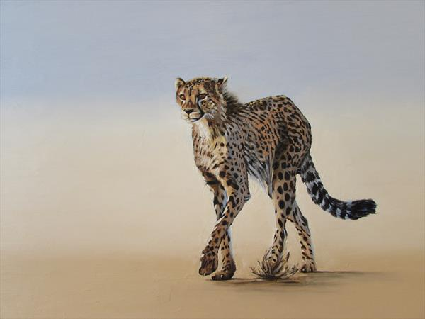 The Lone Cheetah