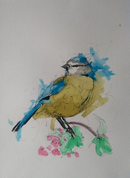 Blue Tit by Sean Wales