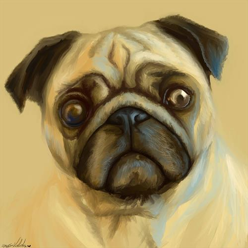 Pugly by David Valentine