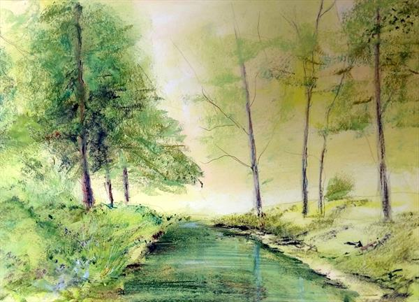 The New Forest Fritham - Latchworth Brook  by David Harvey