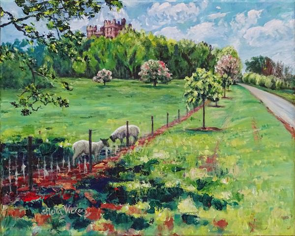 Belvoir Castle And Sheep In A Shady Spot by Sheila Vickers