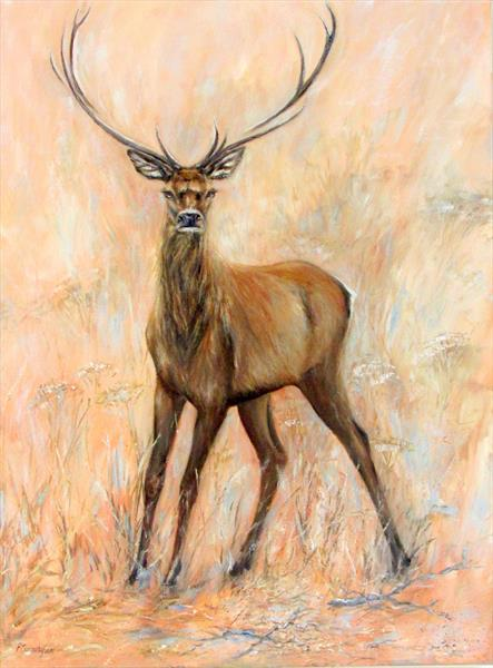 Young Stag by Patricia Cunningham
