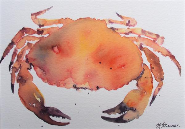 Crab Watercolour