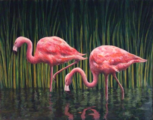 flamingos by colin laski