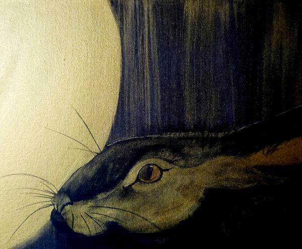 The Full Moon and the Hare