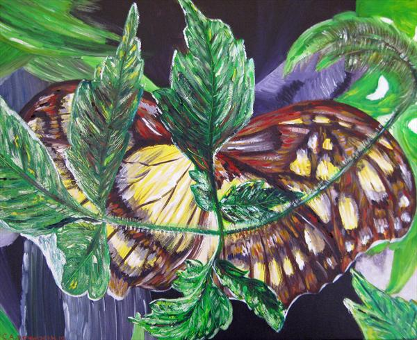Hiding Butterfly by Christine Heyworth