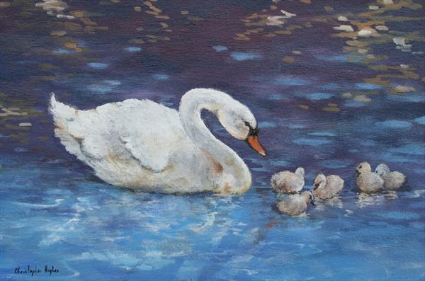 Swan and Cygnets by Christopher Hughes