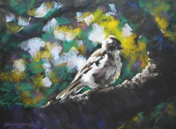 All Fluffed Up by Denise Mitchell