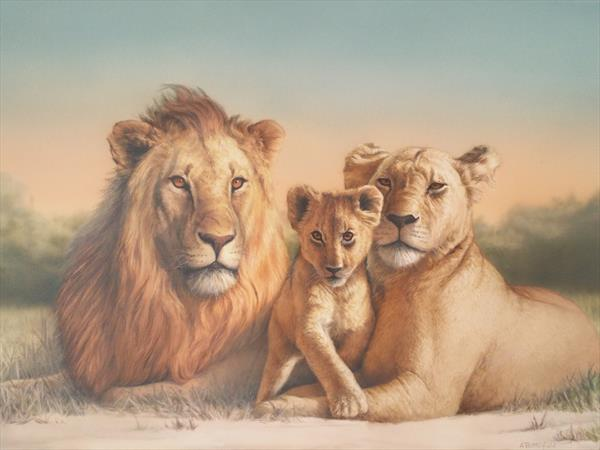Lion family at sunset by Adrian Butterfield