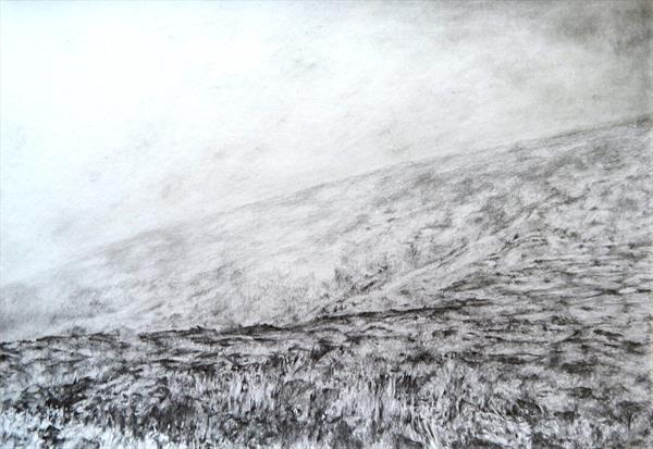 Scottish heather drawing by Richard Freer