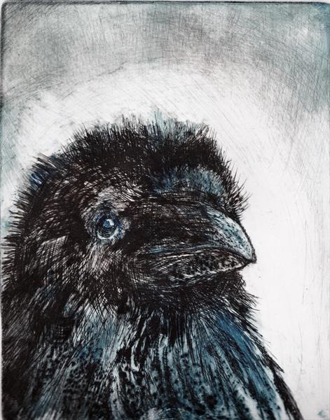 Blue Crow by Pat Knight