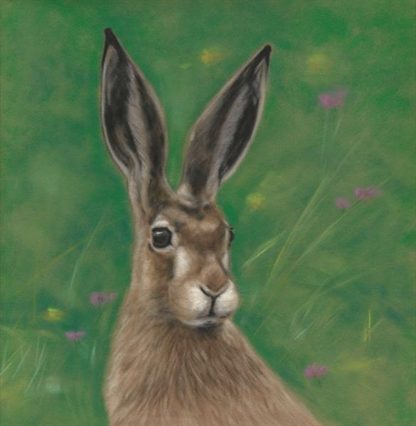 Wild Meadow Hare by Tracey Earl