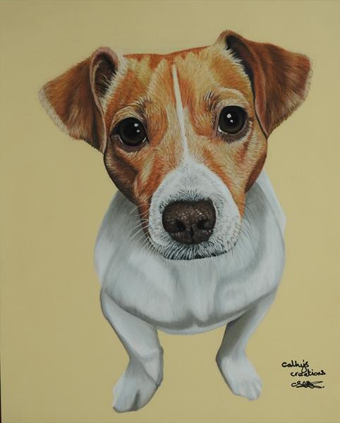 Sky the Jack Russell by Cathy Settle