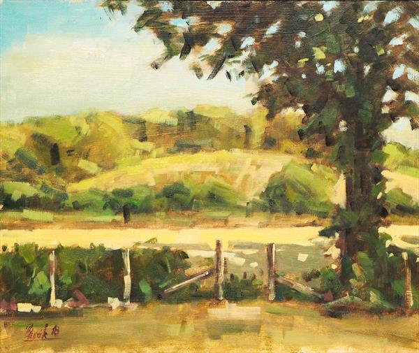 View From Pitton Lodge, Clarendon Park by Michal Plevak