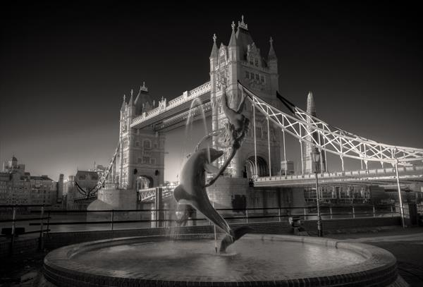 Girl With A Dolphin At Tower Bridge by David Henderson