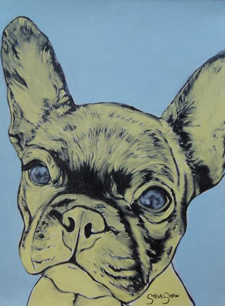 Yellow Frenchie ( oil on paper ) by Steven Shaw