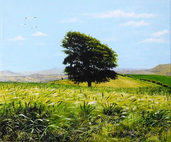 Downland Tree by Paula Oakley
