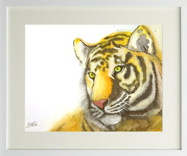 Tiger Watercolour Framed Painting by Matt Dale