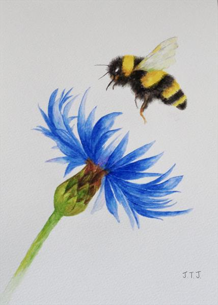 Bumblebee and Cornflower by Jean Tatton Jones