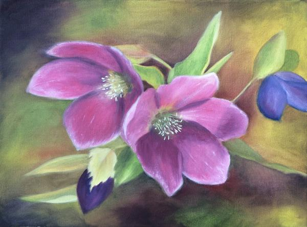 Hellebores by Silvie Tupa