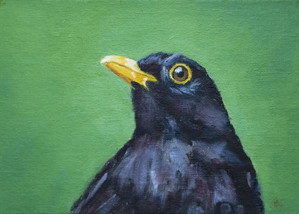 Blackbird Listening by John Crabb