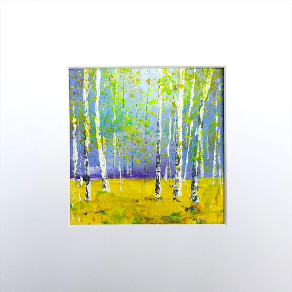 Silver Birch clearing by Teresa Tanner